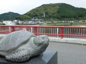 美波町の海亀