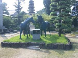 70番札所本山寺の馬