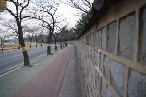 大陵苑の横の通り