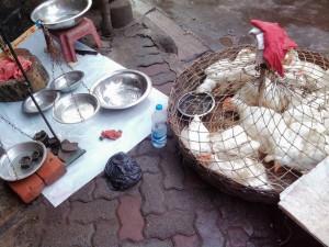 鶏の量り売り