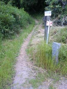 4番札所大日寺への遍路道