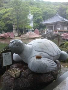 38番札所金剛福寺の亀