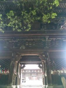 52番札所太山寺の三ノ門